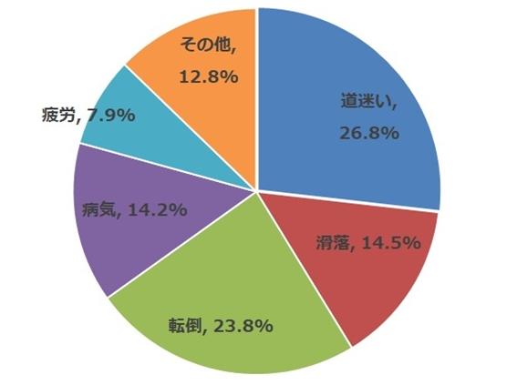 平成29年山岳遭難発生状況(警察庁)