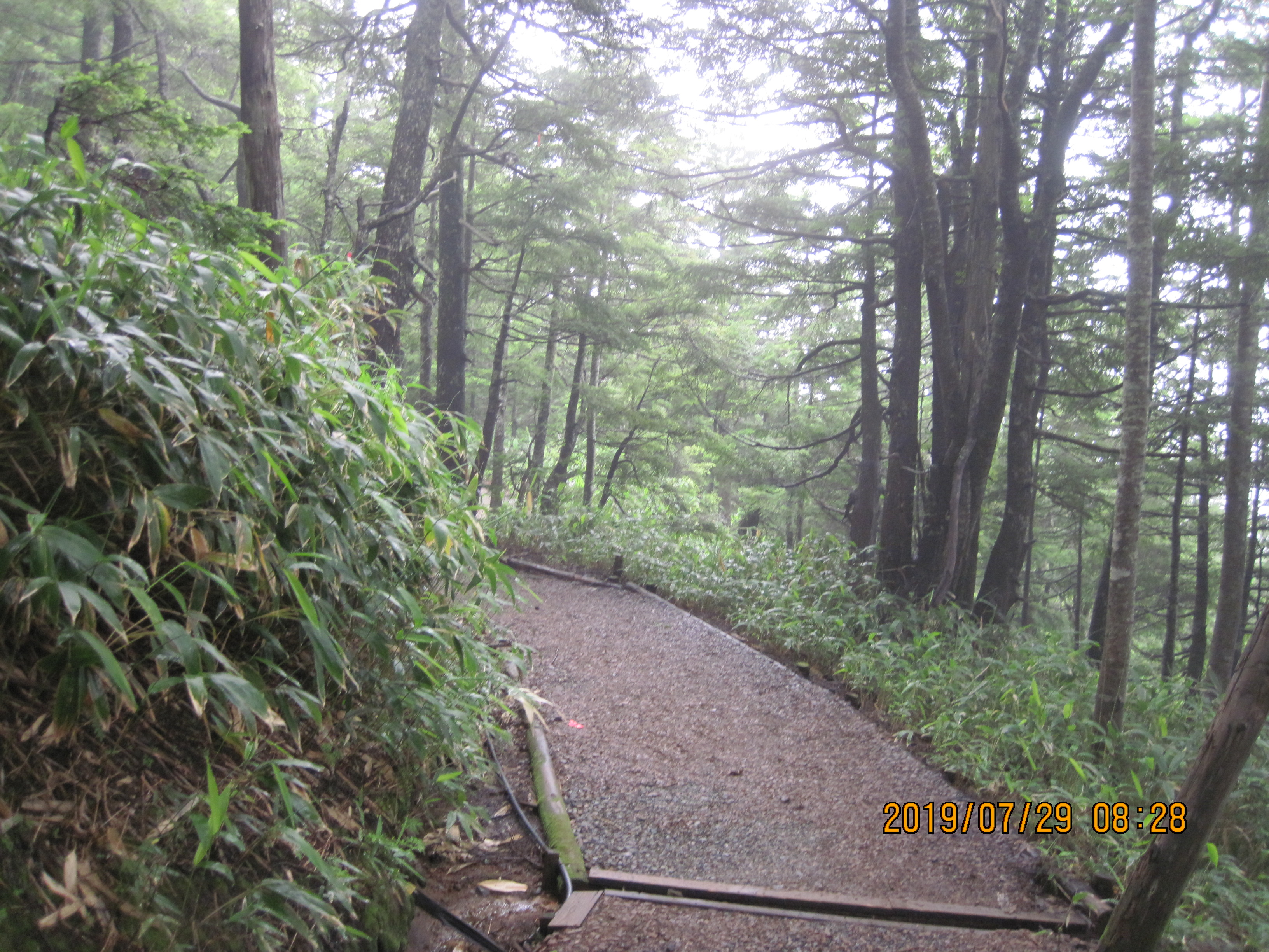 行場山荘までの小路