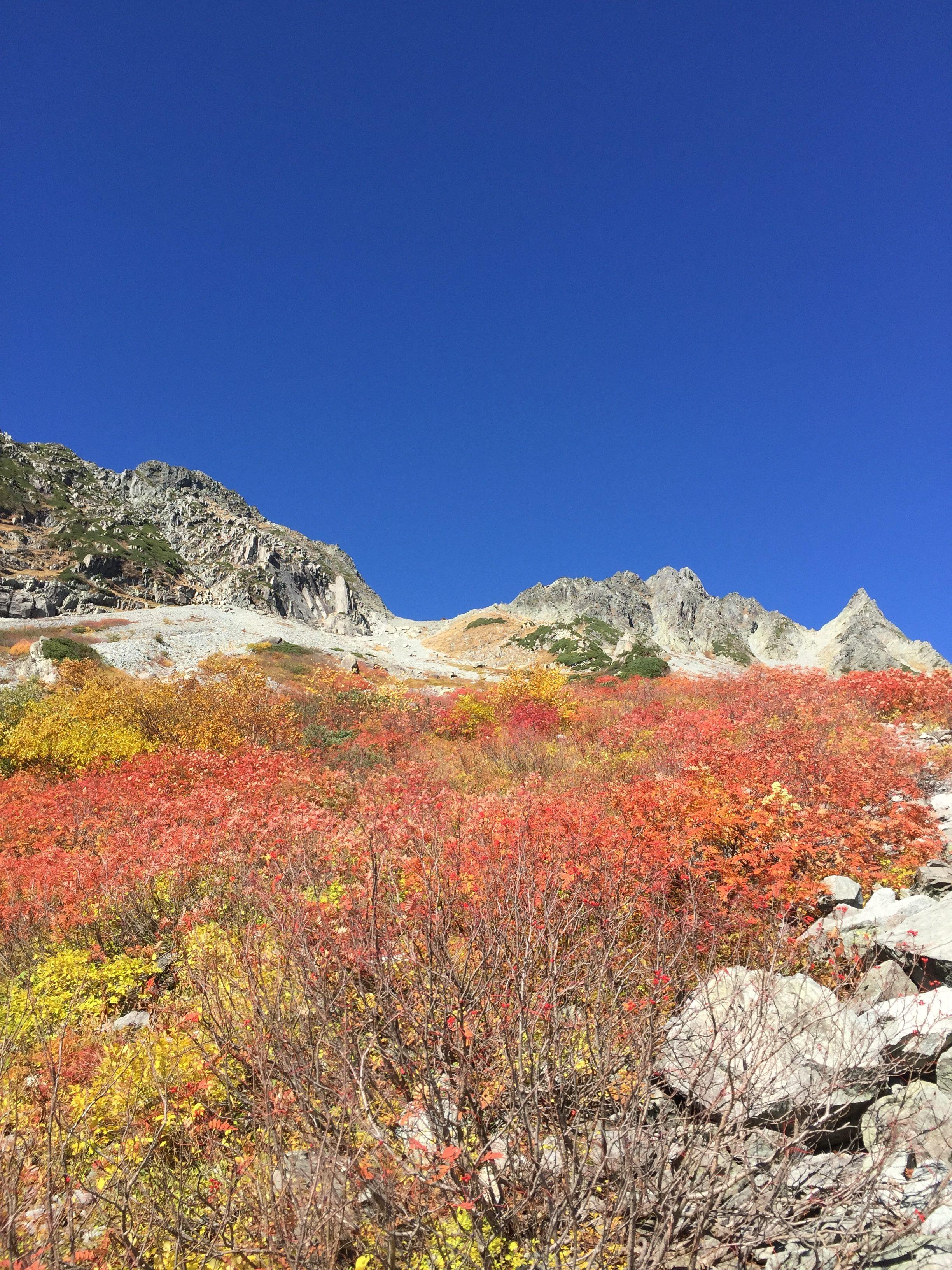 涸沢紅葉の絶景