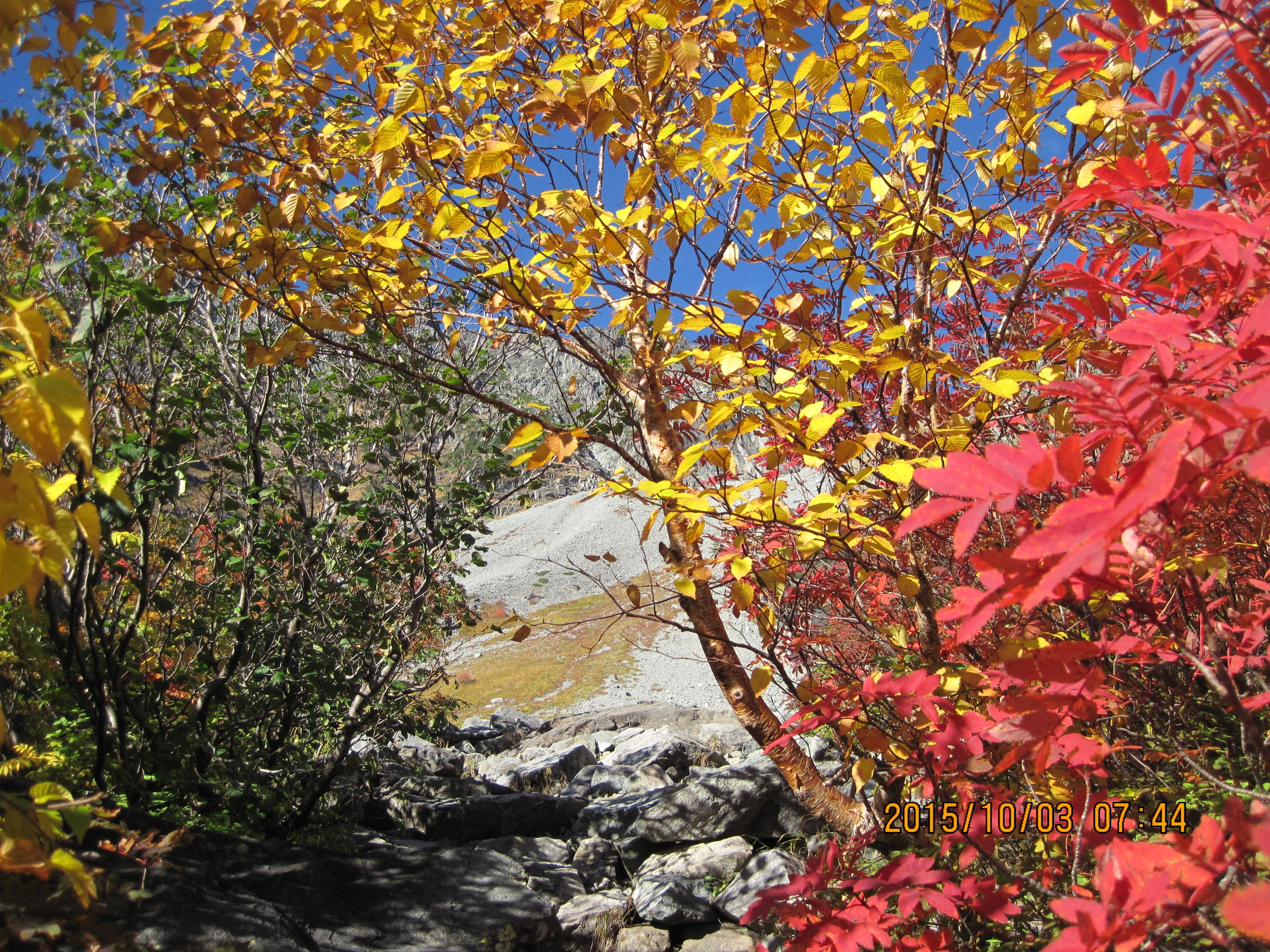 紅葉の中を散策