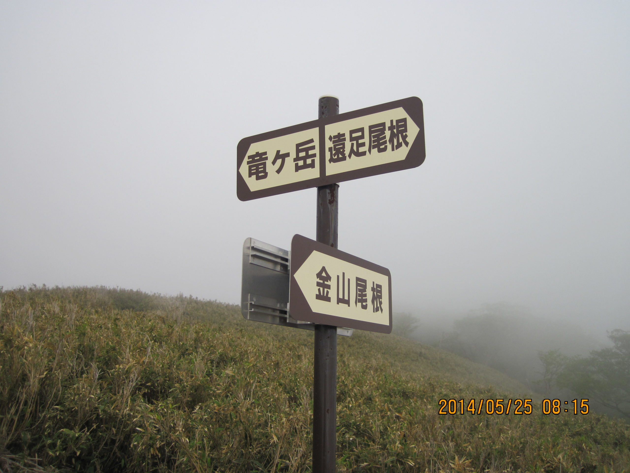 分岐点の標識