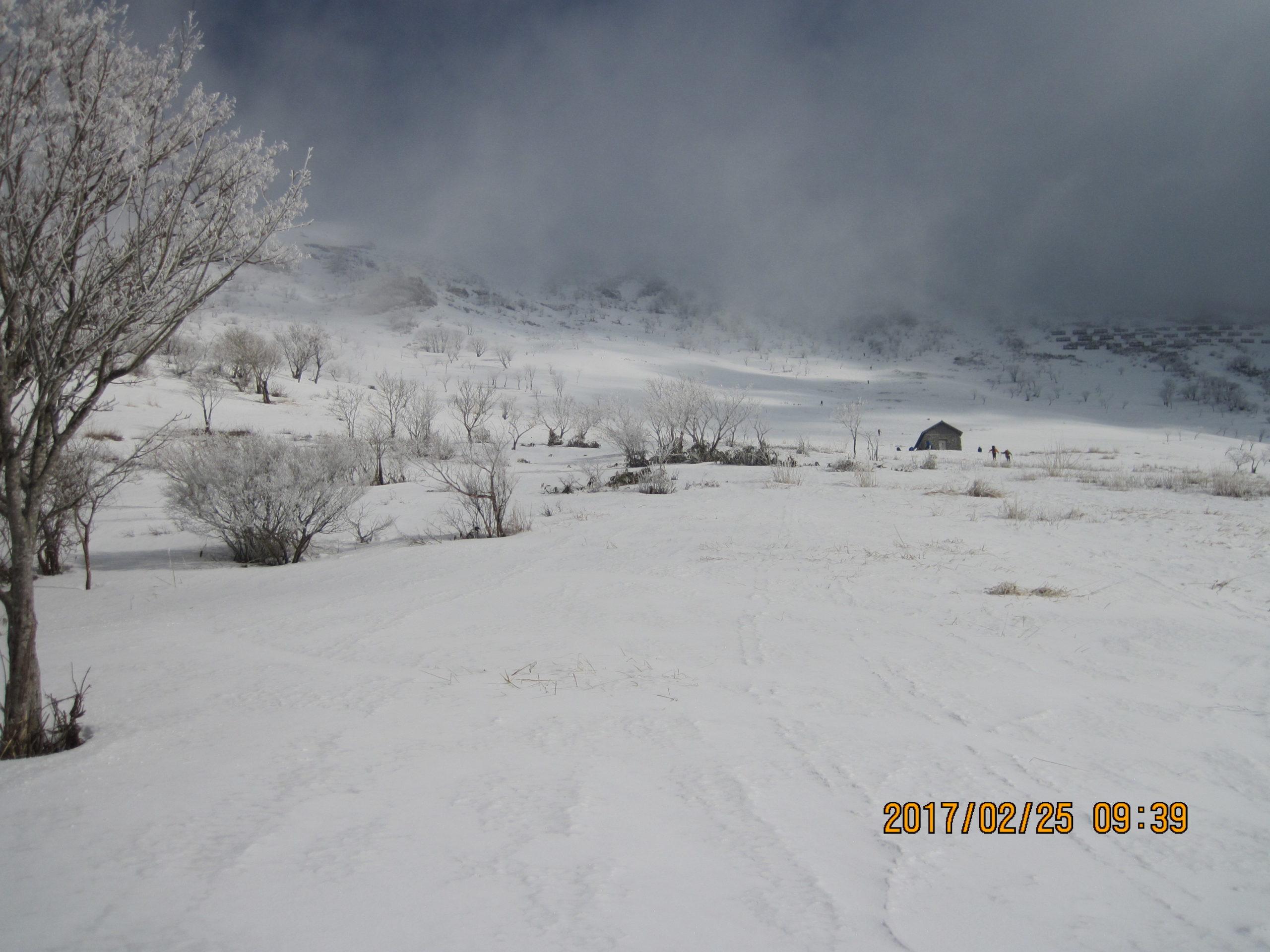 伊吹山で冬登山|スノーシューコース