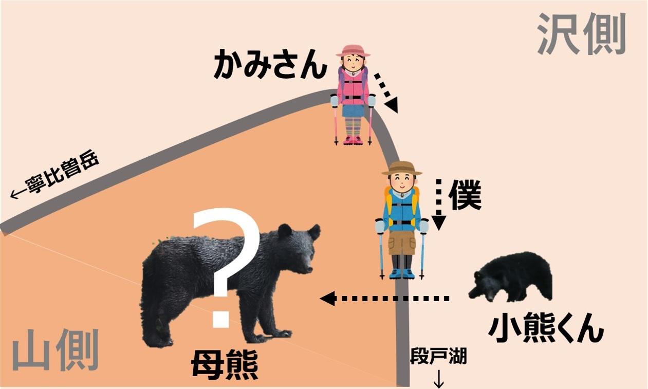 母熊と小熊の間に入ってしまった