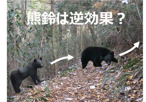 熊鈴は逆効果?