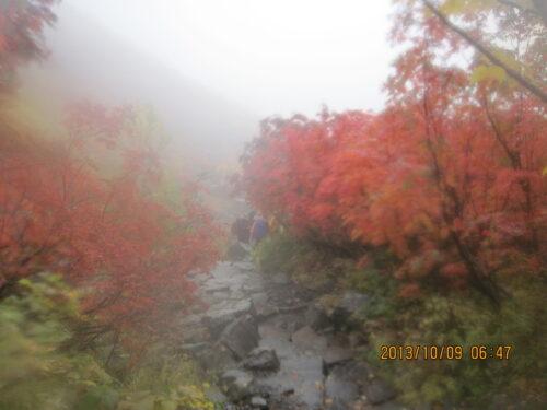 雨の中の登山道