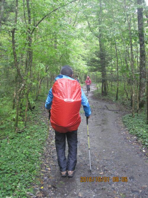 林道の長歩き